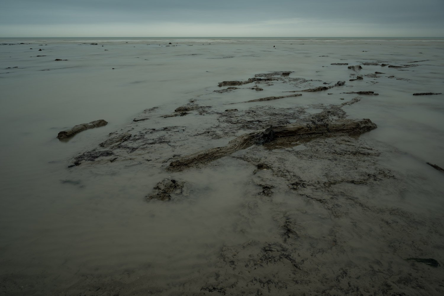 Jeremy Llewellyn Jones - The ancient forest Pett Level beach East Sussex